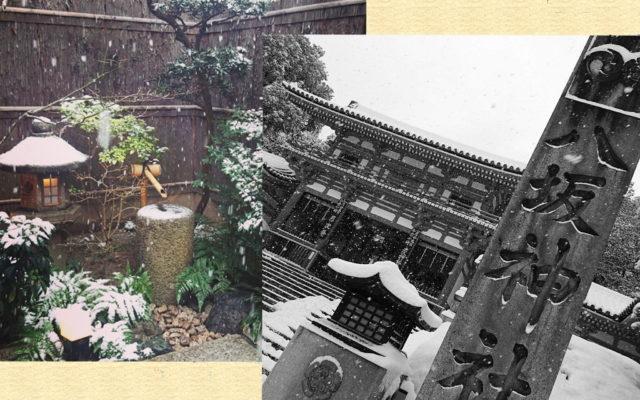 2018年12月(師走) 京都の大人気エリア祇園で撮影したらこんな素敵な写真がとれちゃうのよ!!当店野外撮影エリア~円山公園周辺~