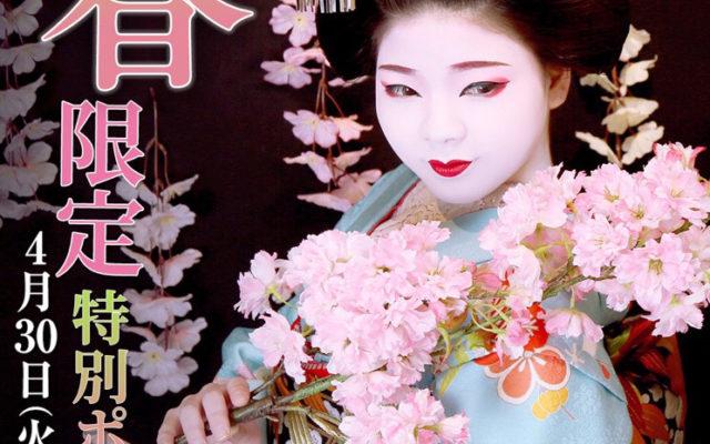 春盛り沢山!!!お子さんの春休み、春の思い出にアナタは何を飾りますか ???ぎをん彩では、2019年春期間限定ポーズを実施します♡去年に比べ桜の量も倍増しましたよおぉぉ♡