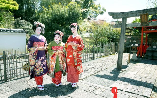 祇園は早くも新緑モード♡みていただければ分かるはず!ぎをん彩のプロカメラマン撮影で新緑がさらに、、! 京都出身スタッフがおすすめする京都・祇園エリアの穴場観光スポットもご紹介します♡