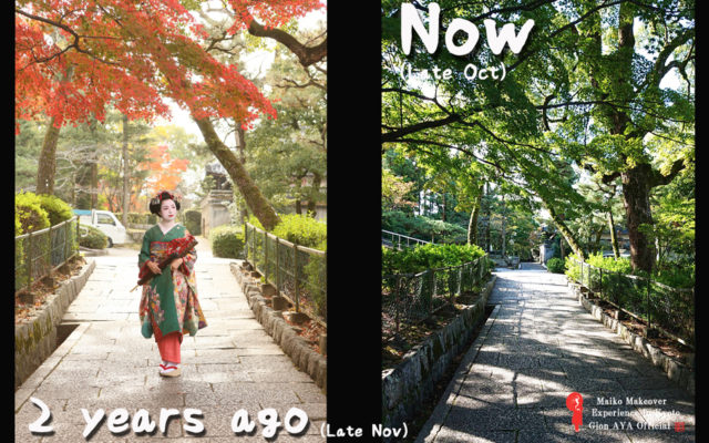 Kyoto now and in the future. It is also possible to take pictures in Maiko, and I highly recommend it!!!