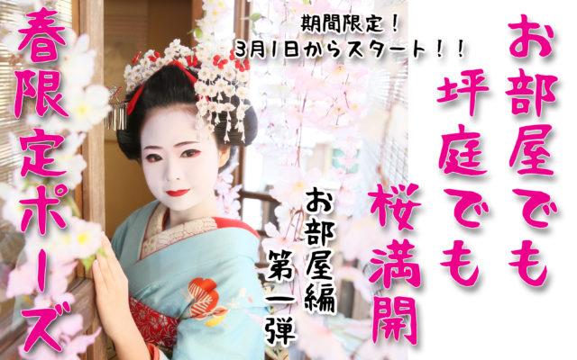 告知♡春限定の撮影ポーズが3月1日からスタート!!!今年の春はお部屋やお庭にも桜が満開です(^^)/ 第一弾!