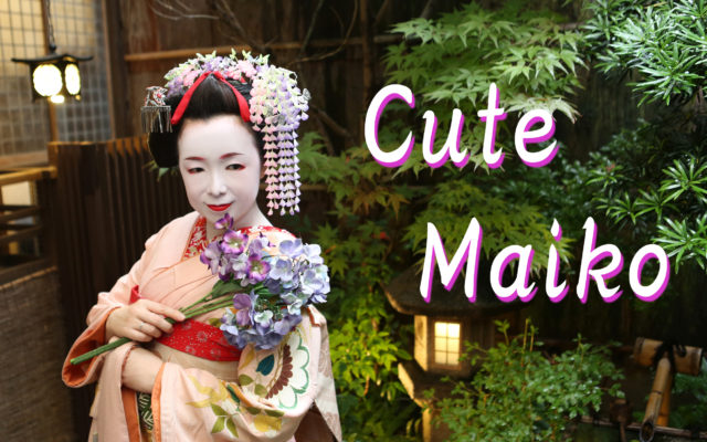 Her maiko style is very cute!!