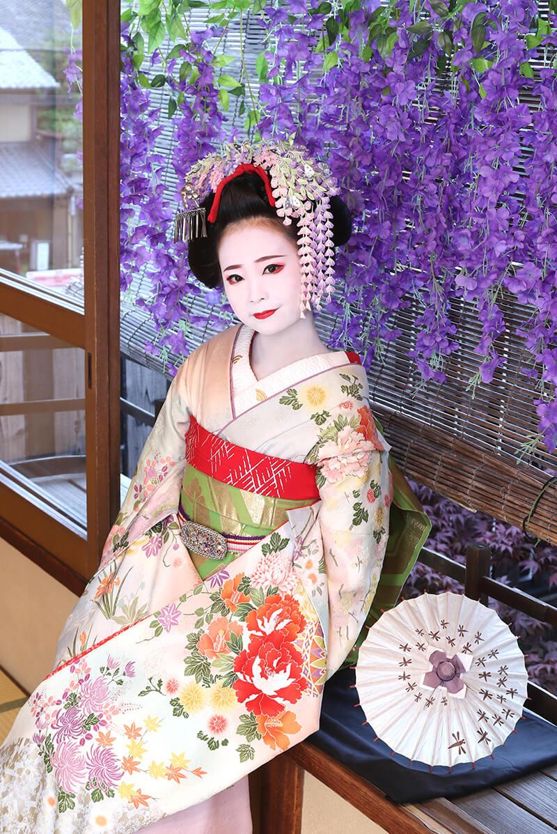 春の舞妓体験・芸妓体験特別ポーズ