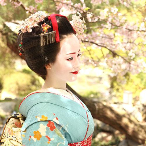京都舞妓体験野外撮影プラン