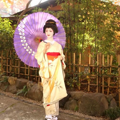 京都芸妓体験特別芸妓プラン