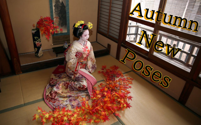 Start Today. We created new poses!!! I thought so that you could feel autumn. Studio Five Poses, Courtyard Three Poses.